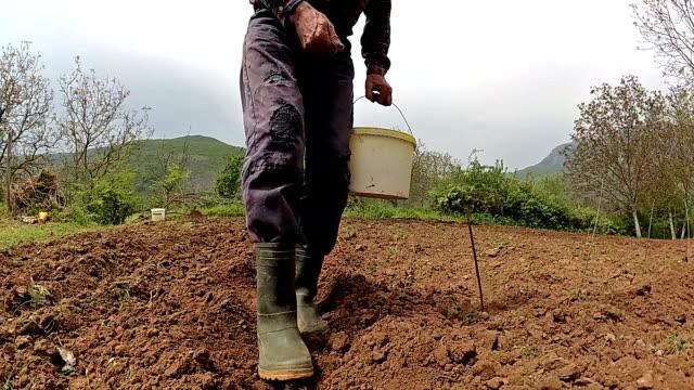 Graines de semis de l'agriculteur de Slow Motion