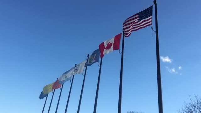 slow motion flags waving on flagpoles - canada flag stock videos & royalty-free footage