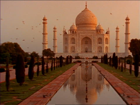 slow motion flock of birds flying in front of taj mahal / india - taj mahal stock videos and b-roll footage