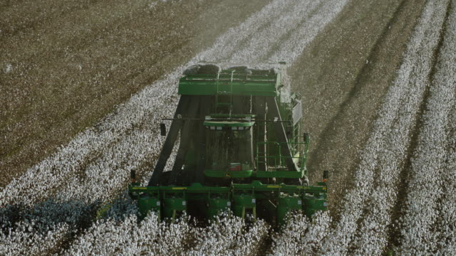 Slow Motion Footage Of Cotton Harvester