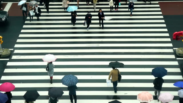 fhd slow motion footage of japanese people crowd crosses the street between the buildings of shinjuku jr station - zebra crossing stock videos & royalty-free footage