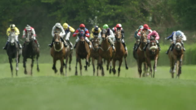 slow motion gallop horse race, group of horses in curve entering home straight, total shot - horse racing stock videos & royalty-free footage