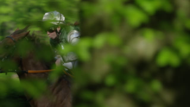 slow motion gallop horse race, group of horses in curve entering home straight, close up, trees in foreground - 競走馬点の映像素材/bロール