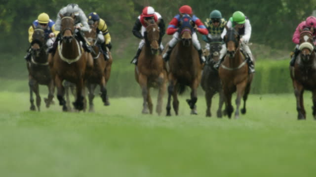 slow motion gallop horse race, home straight, final straight, total shot - pferderennbahn stock-videos und b-roll-filmmaterial