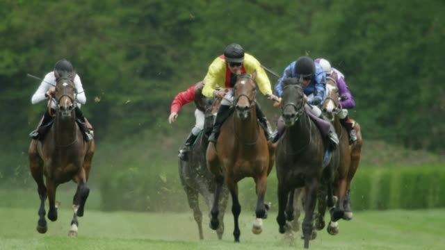 slow motion gallop horse race, home straight, total shot - horse racing stock videos & royalty-free footage