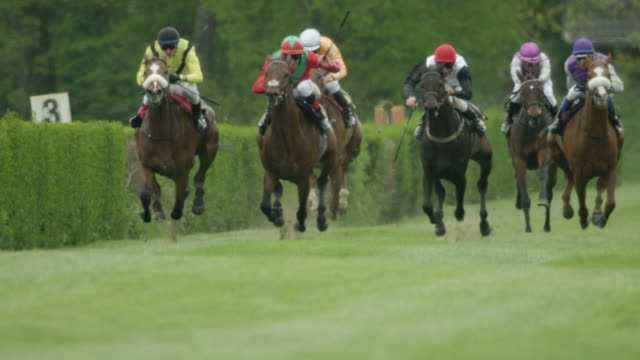 slow motion gallop horse race, home straight, total shot - pferderennbahn stock-videos und b-roll-filmmaterial