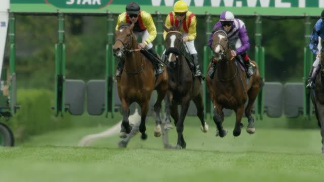 slow motion gallop horse race, start, out of the starting gate, home straight - bridle stock videos & royalty-free footage
