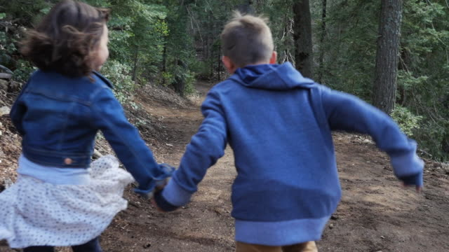 slow motion handheld shot of siblings holding hands while running on footpath in forest - nur kinder stock-videos und b-roll-filmmaterial