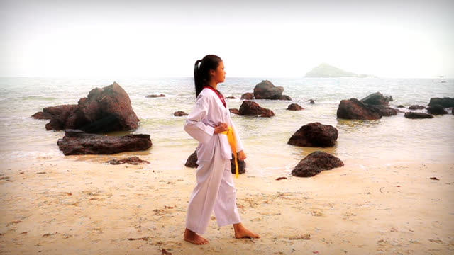 vídeos de stock e filmes b-roll de slow motion hd: practising martial arts outdoors on the beach - artes marciais