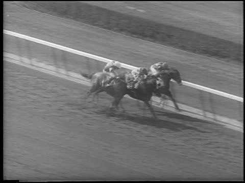 slow motion high angle 3 horses racing neck + neck at belmont / elmont, new york / newsreel - pflanzenfressend stock-videos und b-roll-filmmaterial