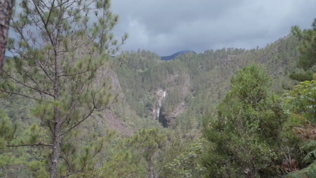 vídeos de stock e filmes b-roll de slow motion: hill and valley covered with green trees with grey clouds above - hispaniola