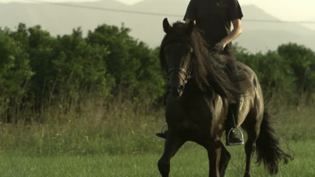 Slow motion horse cantering with rider across meadow, Spain (Individual frames may also be used as a still image. Each frame in its raw state is about 6MB or about 12MB as a 16 bit TIFF)