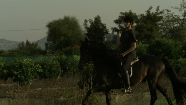 slow motion horse cantering with rider, mountain backdrop, spain, (individual frames may also be used as a still image. each frame in its raw state is about 6mb or about 12mb as a 16 bit tiff) - horse bit stock videos and b-roll footage