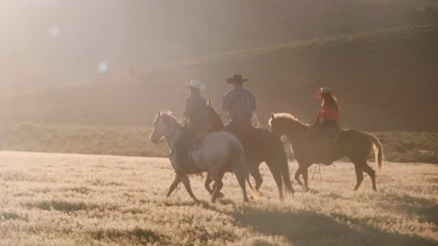 slow motion horses and cowboys in utah usa - all horse riding stock videos & royalty-free footage
