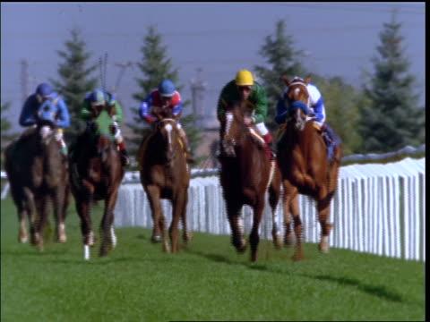 slow motion jockeys on horses racing towards camera - herbivorous stock videos & royalty-free footage
