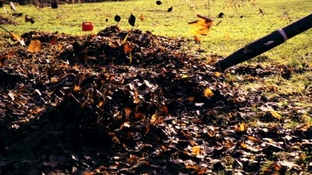 Slow motion: Leaf blowers
