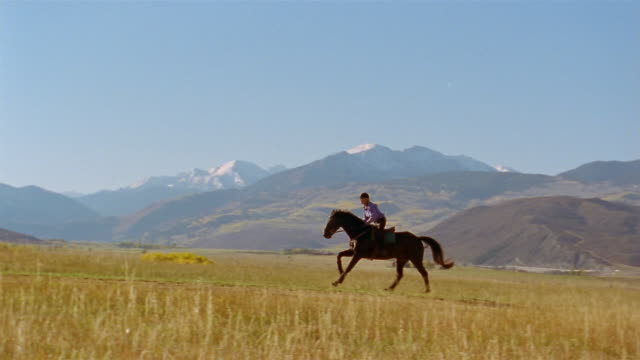 stockvideo's en b-roll-footage met slow motion long shot woman riding on horse in pasture / elk mountains in background / colorado - alleen één mid volwassen vrouw