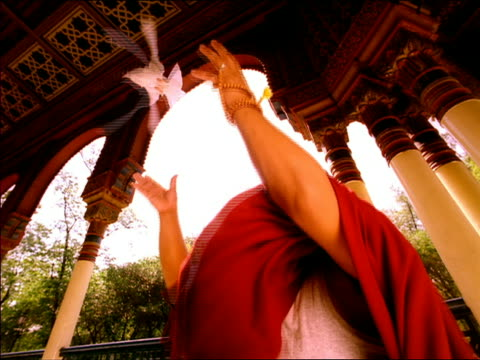 slow motion low angle medium shot asian male monk releasing dove into air in temple / mexico city - one mid adult man only stock videos & royalty-free footage