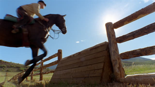 vidéos et rushes de slow motion low angle medium shot equestrian jumping horse over fence on sunny day / colorado - clôture