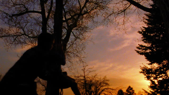vidéos et rushes de slow motion low angle silhouette of boy pushing other boy on rope tree swing at sunset / trees in background / montana - frère