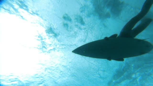 Slow motion low angle wide shot woman lying on surfboard / wave crashing around her / Tahiti