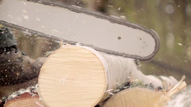 vídeos de stock, filmes e b-roll de câmera lenta : homem de madeira - serra elétrica