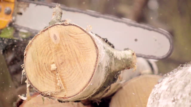 Slow motion: Man cutting wood