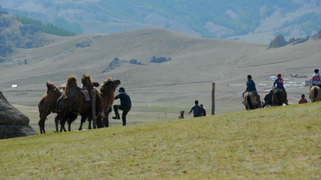 vidéos et rushes de slow motion: man sitting on horse at field against mountains with people horseback riding during race - ulaanbaatar, mongolia - mongolie indépendante
