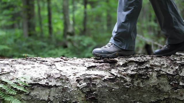 slow motion man walking on tree truck - stivale video stock e b–roll