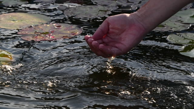 vídeos de stock e filmes b-roll de slow motion man's hand grabbing water from pond - hd format