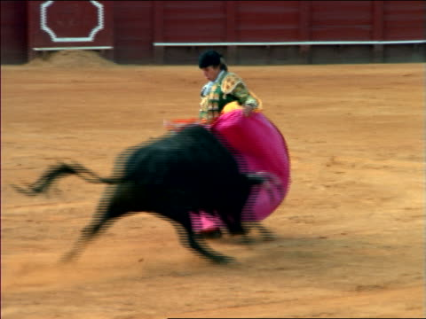 slow motion matador with pink cape taunting bull in arena during bullfight / Seville, Spain