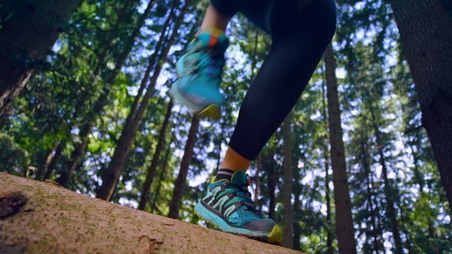 slo mo ld caucasian female runner running over a fallen tree trunk in the forest - tree trunk stock videos & royalty-free footage