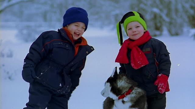 vidéos et rushes de slow motion medium shot 2 boys playing with husky dog in snow - chien de traîneau
