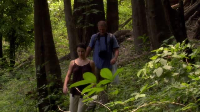 slow motion medium shot couple hiking in rainforest/ the amazon, brazil - paar mittleren alters stock-videos und b-roll-filmmaterial
