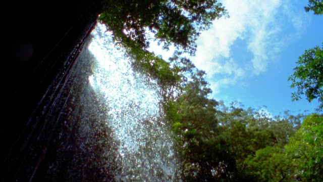 Slow motion medium shot low angle tilt down person jumping from waterfall into water surrounded by trees / Maui, Hawaii