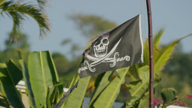 """Slow motion medium shot of pirate flag / Playa Hernadez, Punta Arenas, """