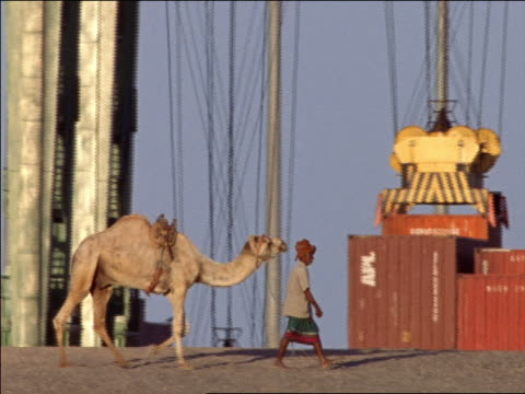 slow motion pan middle eastern man leading camel in front of group of shipping containers / aden, yemen - aden stock videos & royalty-free footage