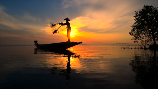 slow motion movie of fisherman throwing net, sunrise scene, thailand - tradition stock videos & royalty-free footage