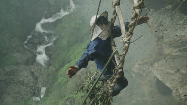 Slow motion, Nepalese honey farmer hangs from side of mountain