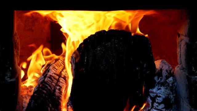 slow-motion eines brennenden feuers mit wald - brennbar stock-videos und b-roll-filmmaterial