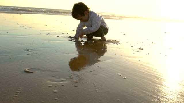 slow motion of a cute child enjoying in the beach with the sun behind him - silvestre bildbanksvideor och videomaterial från bakom kulisserna