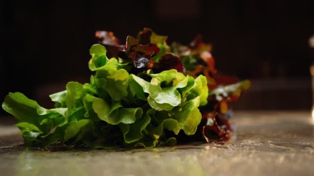 vídeos de stock e filmes b-roll de slow motion of a falling washed lettuce - legume de folhas