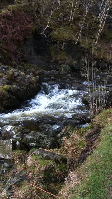 slow motion of a small scottish river in spring - johnfscott stock videos & royalty-free footage