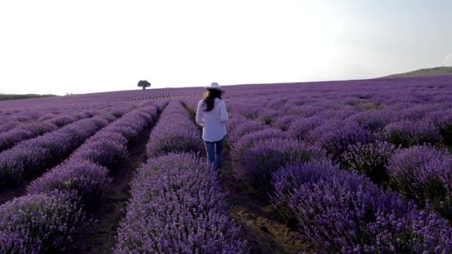Slow motion van een jonge boer vrouw in haar Lavendel veld werkende zakenvrouw in landbouw, woman's day, emancipatie, in het wit gekleed