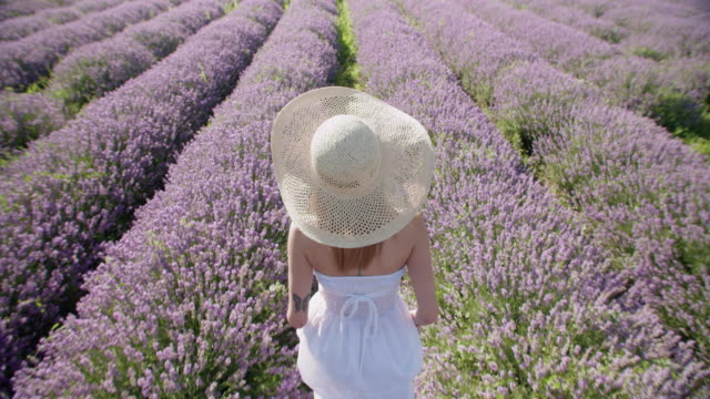 slow motion of a young smiling teenager dressed in white in the middle of the blooming lavender fields. wanderlust. - eco tourism stock videos & royalty-free footage