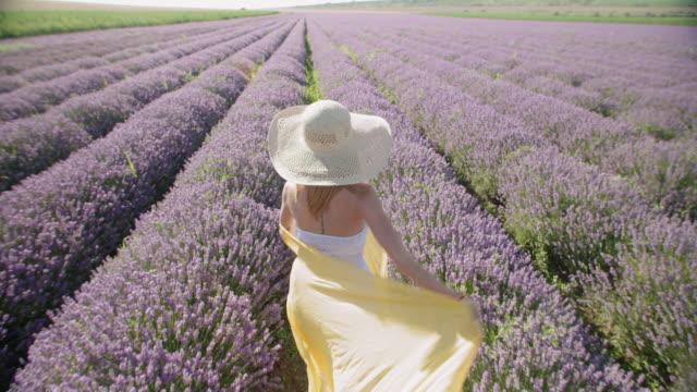 slow motion of a young smiling teenager dressed in white walking in the middle of the blooming lavender fields. wanderlust. - eco tourism stock videos & royalty-free footage