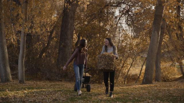 slow motion of approaching girls carrying autumn leaves in basket and wheelbarrow / cedar hills, utah, united states - muoversi in una direzione video stock e b–roll