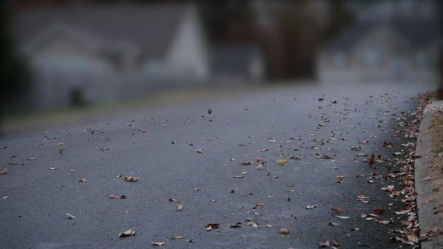 vídeos y material grabado en eventos de stock de slow motion of autumn leaf rolling on the road in a windy cloudy day - recuerdos