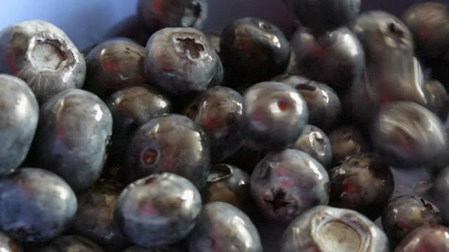 stockvideo's en b-roll-footage met slow motion van bosbessen fruit vallende in container, slow motion - antioxidant