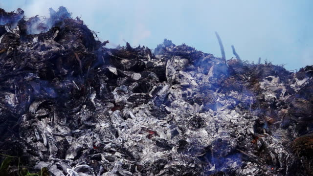 slow motion of burned garbage. - land stock videos & royalty-free footage